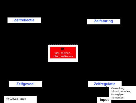 Zelfreflectie ontwikkel-model