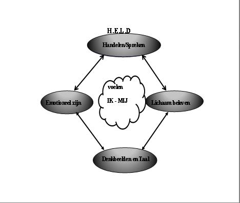 model H.E.L.D basis